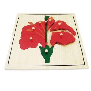 giáo cụ khoa học montessori - Ghép hình bông hoa - http://thientainhi.com/danh-muc-giao-cu-khoa-hoc-montessori/