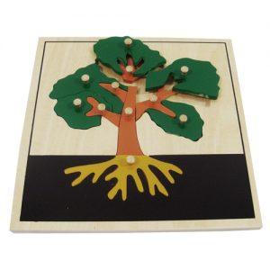 giáo cụ khoa học montessori - Ghép hình cái cây - http://thientainhi.com/danh-muc-giao-cu-khoa-hoc-montessori/