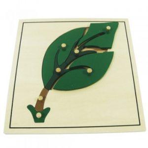 giáo cụ khoa học montessori - Ghép hình lá cây - http://thientainhi.com/danh-muc-giao-cu-khoa-hoc-montessori/