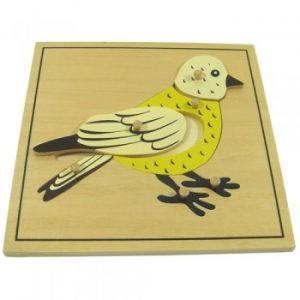 giáo cụ khoa học montessori - Ghép hình con Chim- http://thientainhi.com/danh-muc-giao-cu-khoa-hoc-montessori/