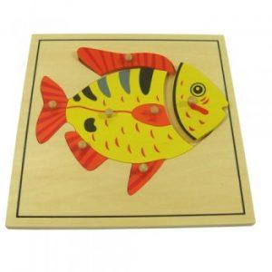 giáo cụ khoa học montessori - Ghép hình con Cá- http://thientainhi.com/danh-muc-giao-cu-khoa-hoc-montessori/