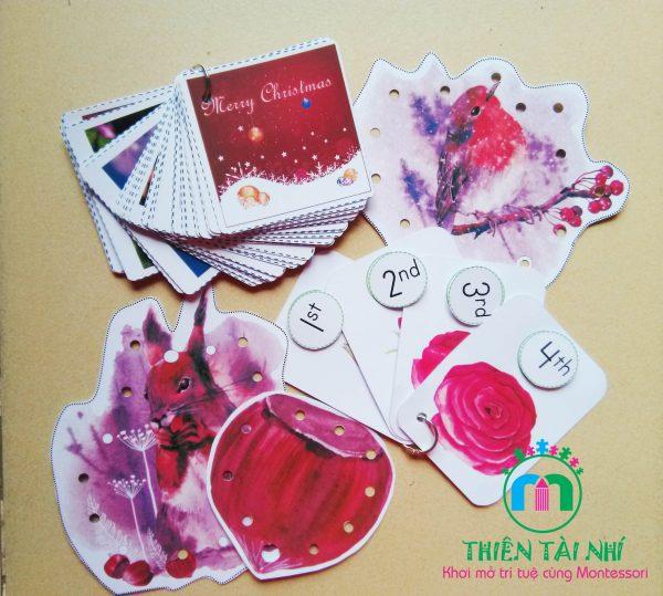 Học liệu cho bé từ 2-3 tuổi - Thiên Tài Nhí