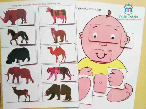 học liệu cho bé từ 1-2 tuổi - Thiên Tài Nhí